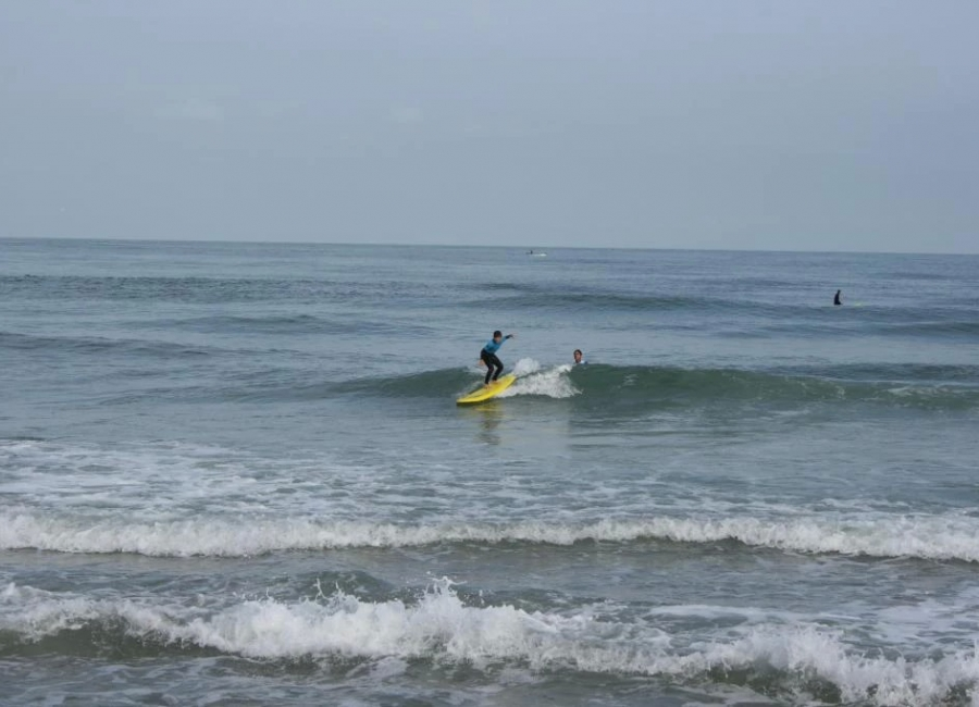 Enseignement surf Anglet